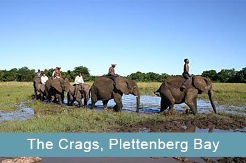 elephant sanctuary plettenbergbay icon